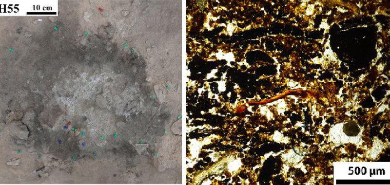 Las-hogueras-prehistoricas-de-Alicante-hablan-de-como-vivian-los-neandertales_