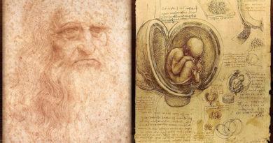 Cinco-siglos-sin-Leonardo-el-genio-que-dibujo-las-entranas-del-cuerpo-humano_
